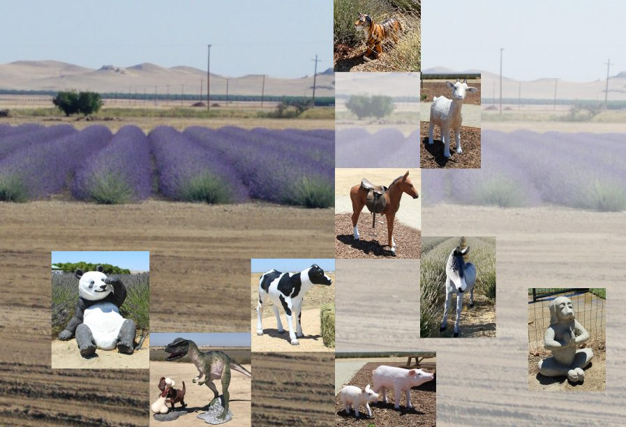 The Lavender Garden Animal Sculptures