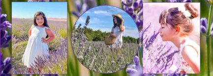 Photography Day at The Lavender Garden